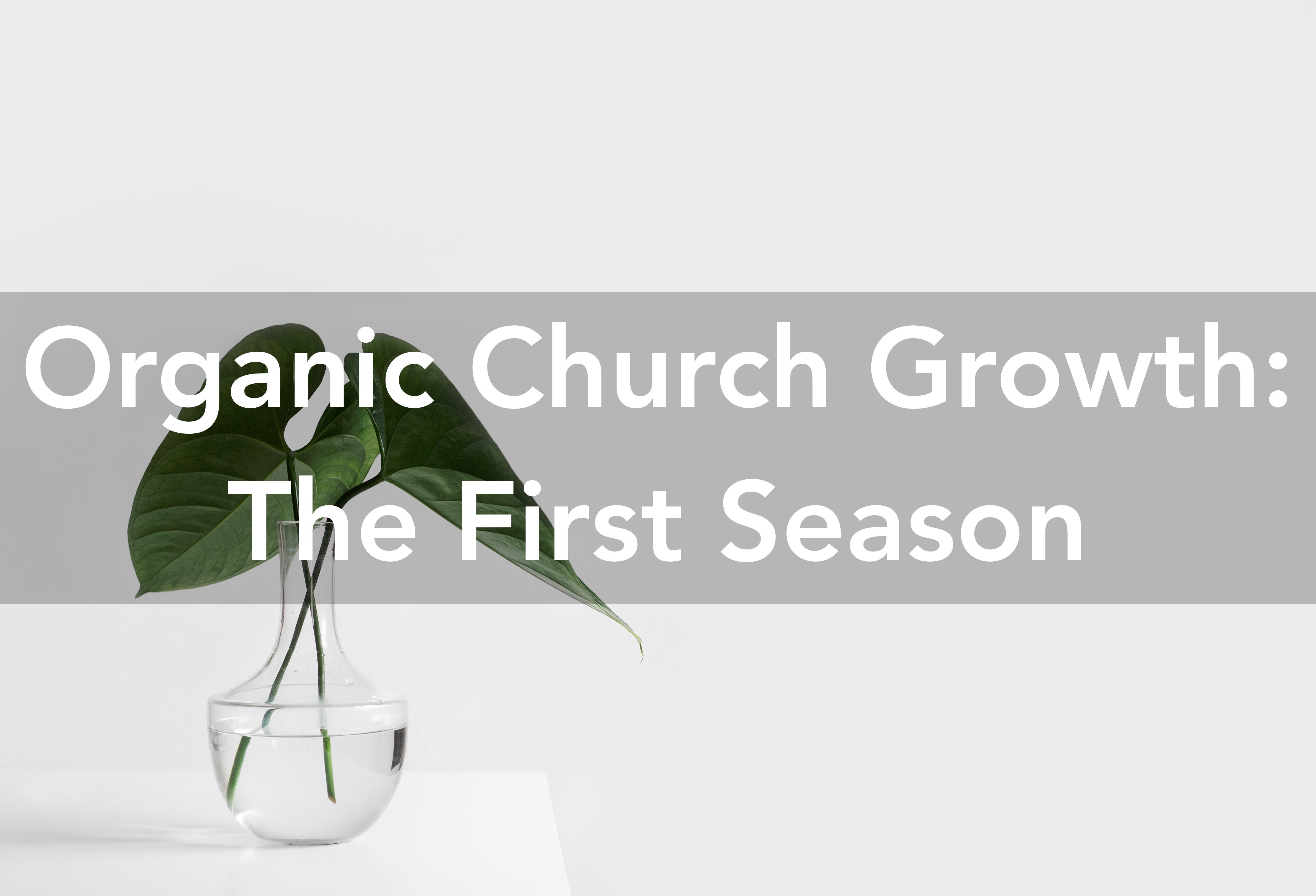 Organic Church Growth
