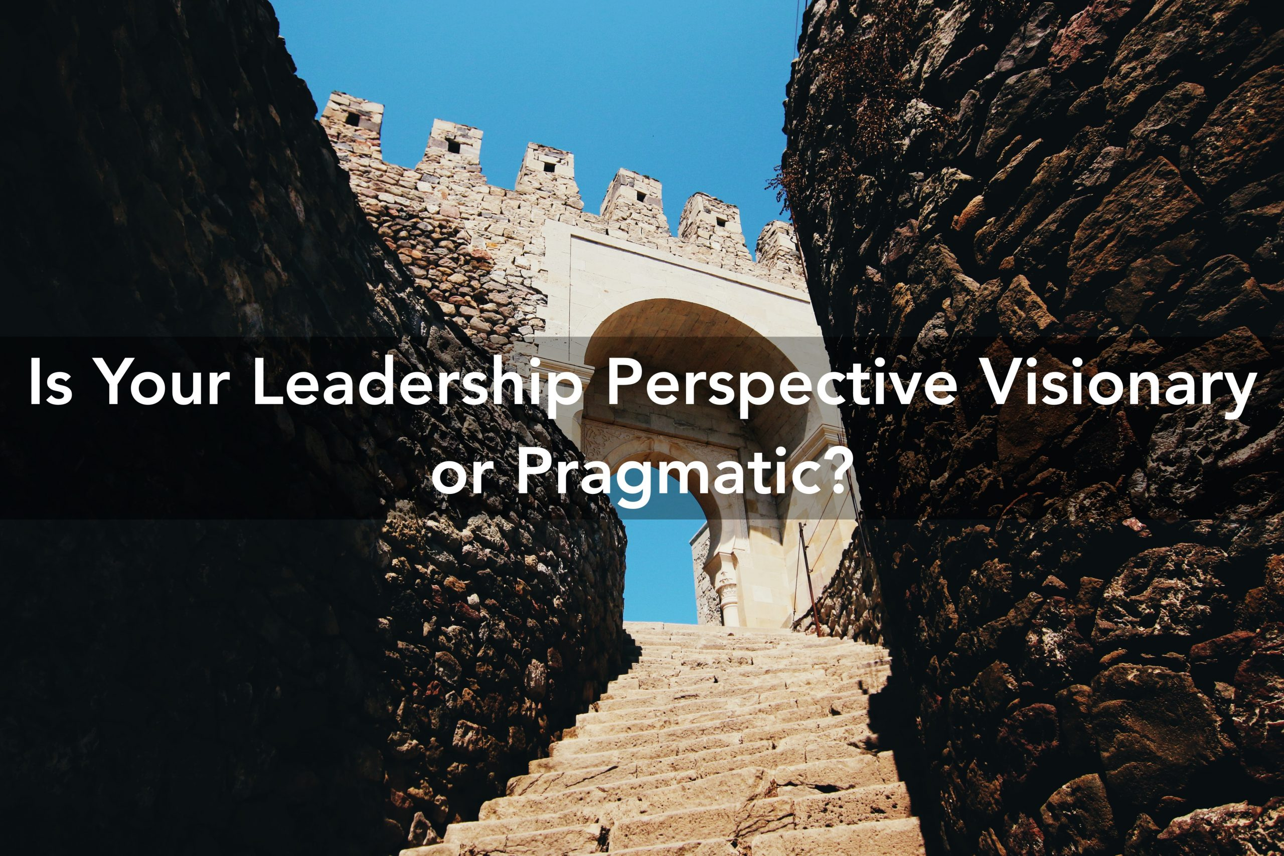 Leadership Perspective