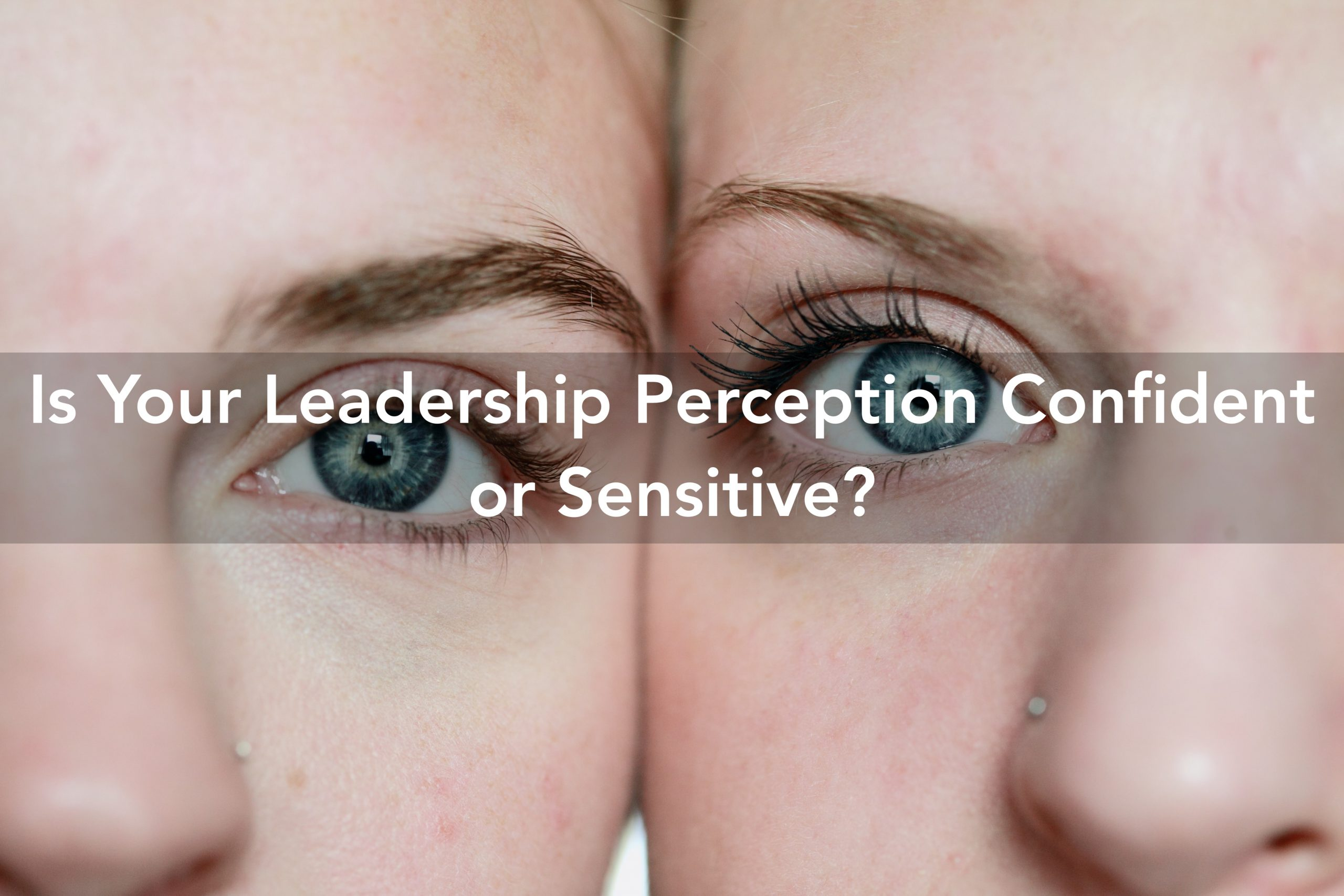 leadership perception